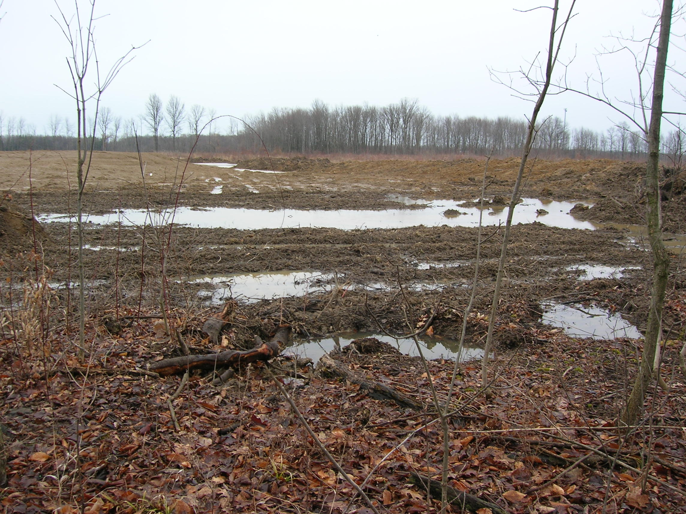 Sewage Sludge Lagoon in Pittsfield from outside City: Don